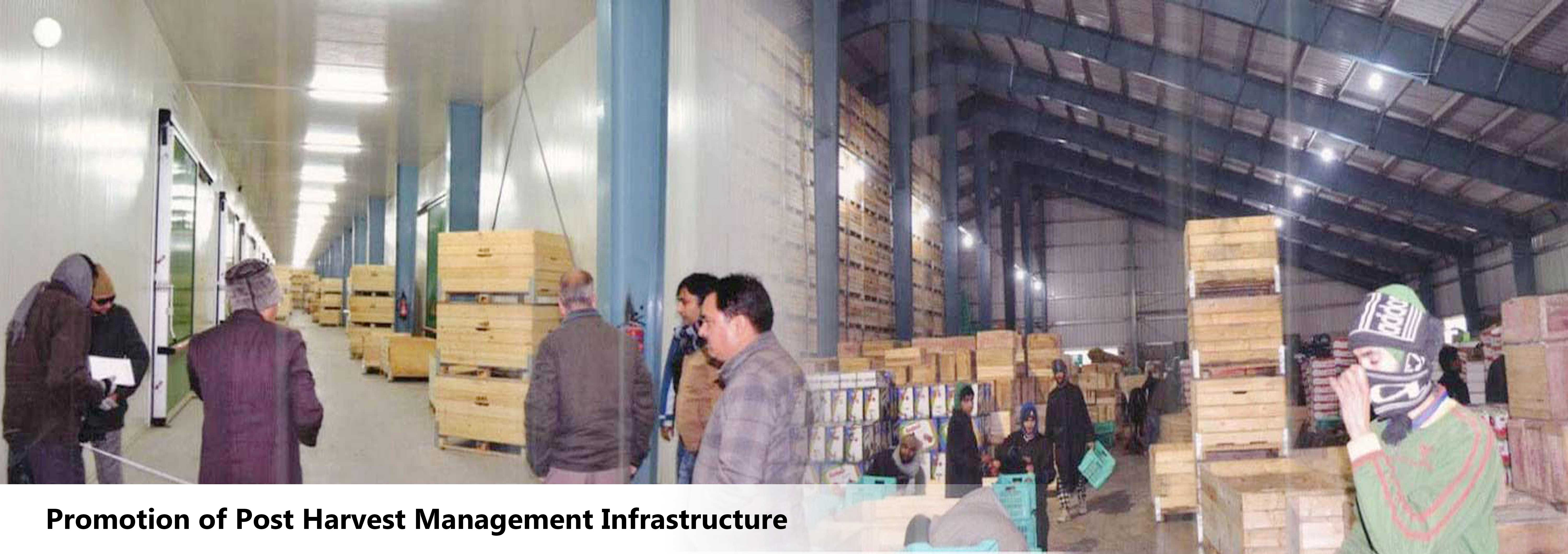 cold storage business plan ppt india